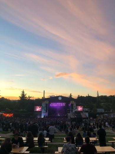 Tomavistas Festival: Festival Tomavistas 2019