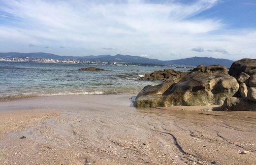 Playa Cunchiña - Playa canina