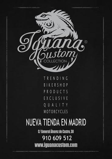 Iguana Custom Collection