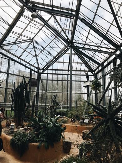 Hortus Botanicus Vrije