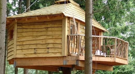 Cabanes als arbres: Inici